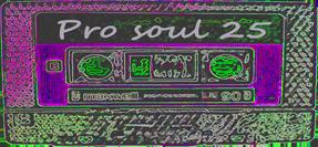 Progressive Soul Vol.25